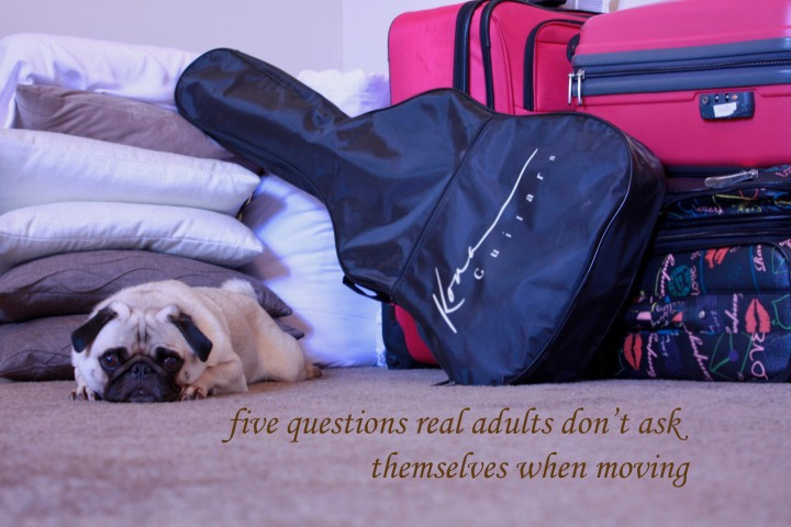 Five questions I assume real adults don't need answers to when moving.